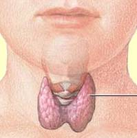 Clomid and thyroid disease