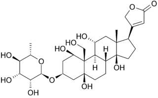 Ouabain_Chemical_Structure